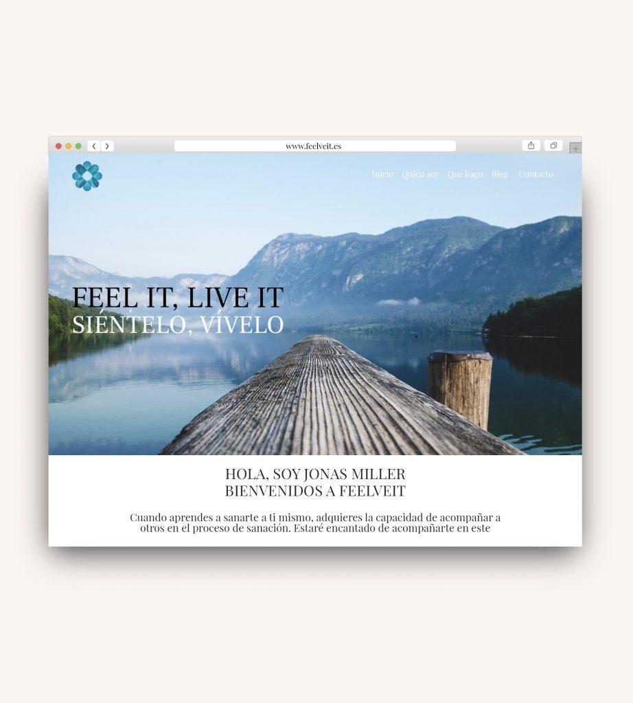 diseño web asturias, diseño web gijón, diseño web oviedo, owami creativos